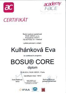 Bosu core web